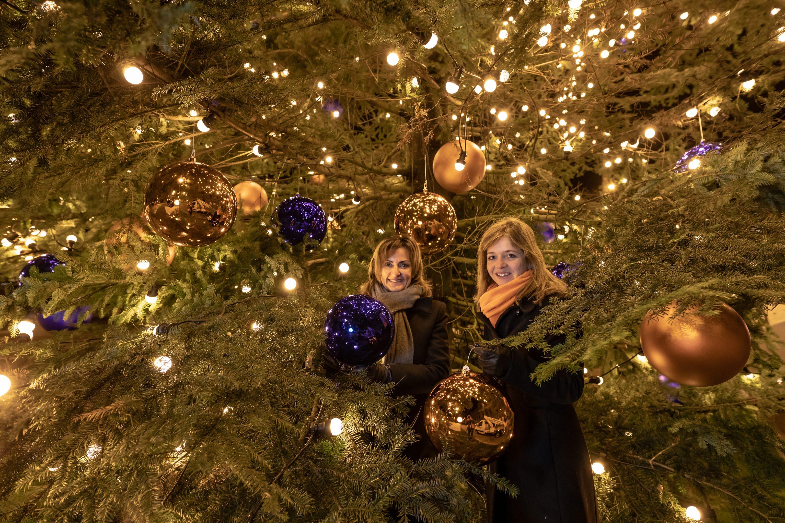 der gr sste luzerner weihnachtsbaum leuchtet wieder ewl. Black Bedroom Furniture Sets. Home Design Ideas